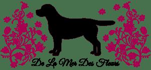 De La Mer Des Fleurs Labrador Retriever