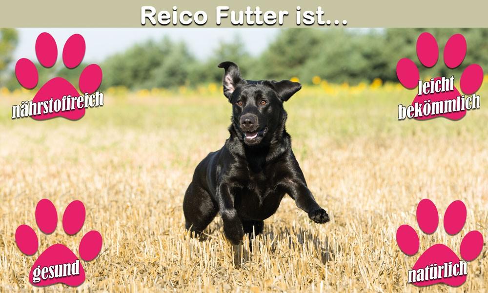 Reico Futter / Sandra Stober